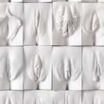 coverJamie-McCartney_Great-Wall-of-Vagina_Panel-10