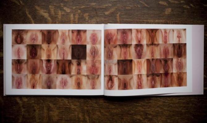 vagina pussy